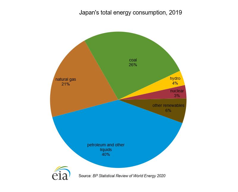 Japans total energy consumption 2019 pie chart